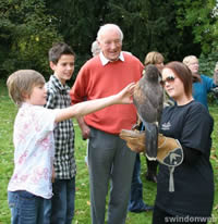 Falconry Experiences Chiseldon House Hotel Swindon
