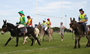 Highworth Lions Donkey Derby