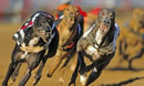 EATING OUT DEAL: Swindon Greyhounds
