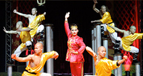 Chinese State Circus at Wyvern Theatre