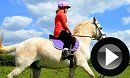 Horse Riding Open Day