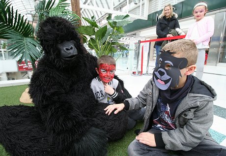 Gorillas at The Brunel
