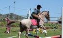 Summer Pony Camps