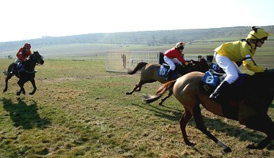 Point-to-point racing at Barbury Castle, near Swindon