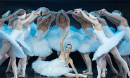 Swan Lake & Sleeping Beauty