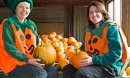 Pumpkins at Roves Farm