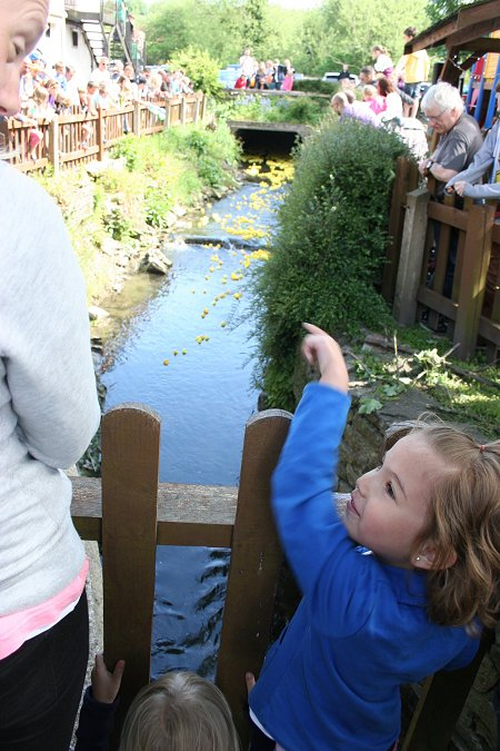 Swindon Duck Race