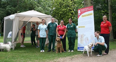 Thameswood Vets Canine Check Ups