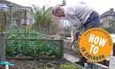Growing Your Own Food in Swindon