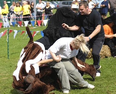 Arval Summer Party Swindon 2008