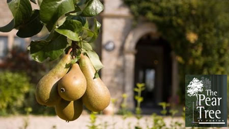 Pear Tree at Purton Weddings Swindon