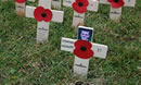 Lydiard Park Field of Remembrance