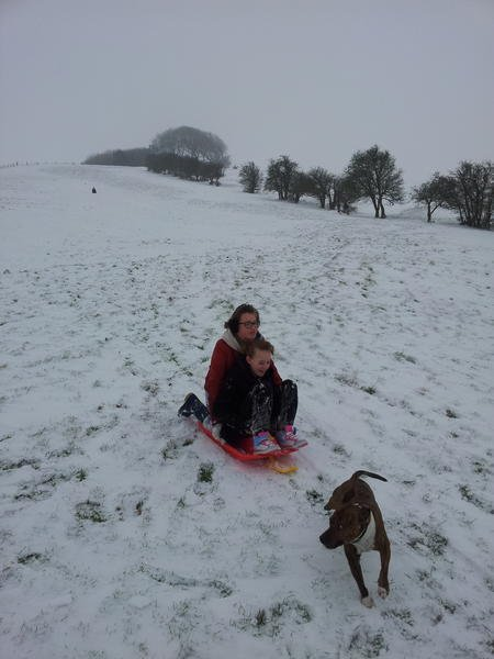 Sledging at Liddington Hill