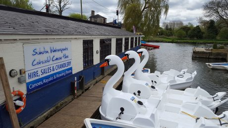 Swan boats for hire in Lechlade