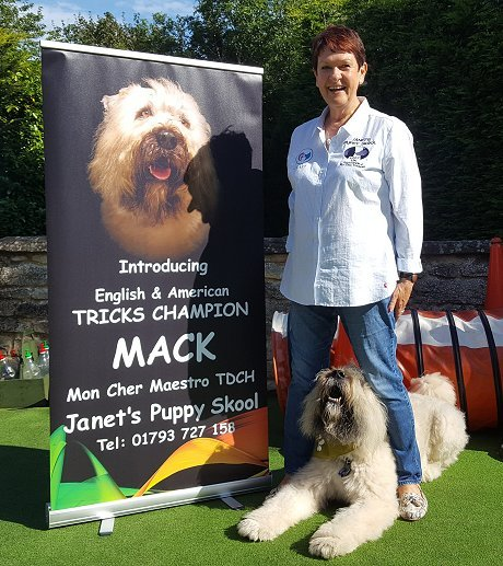 Janet's Puppy Skool Swindon