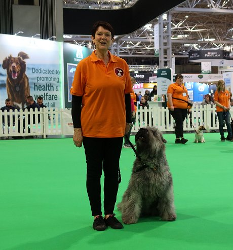 Janet's Puppy Skool at Crufts 2020