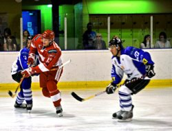Swindon Wildcats 2008 season