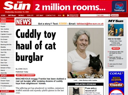 Cat burglar Swindon