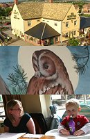 Tawny Owl Swindon Sunday Lunch