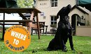DOG FRIENDLY FOOD PUBS