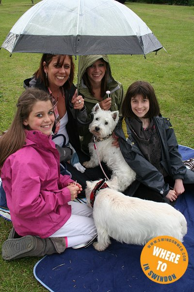 Westie Rehoming Swindon