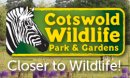 Cotswold Wildlife Park and Gardens