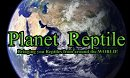 Planet Reptile