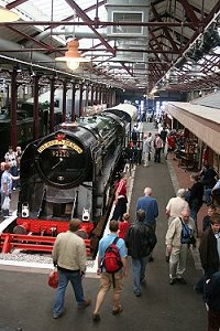 STEAM Museum