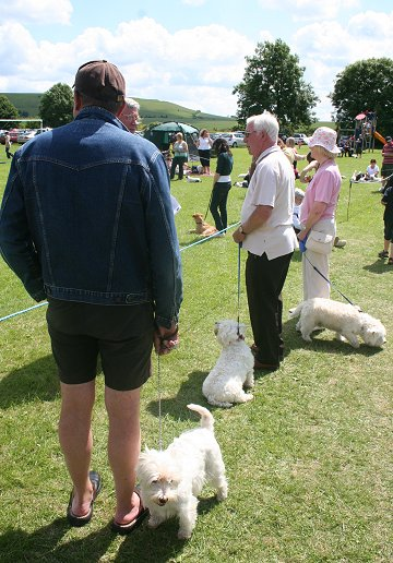Liddington Fete and Dog Show 2008