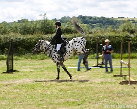 Wanborough Horse and Dog show
